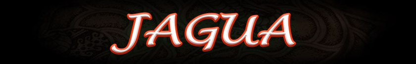 Atlanta Jagua Services
